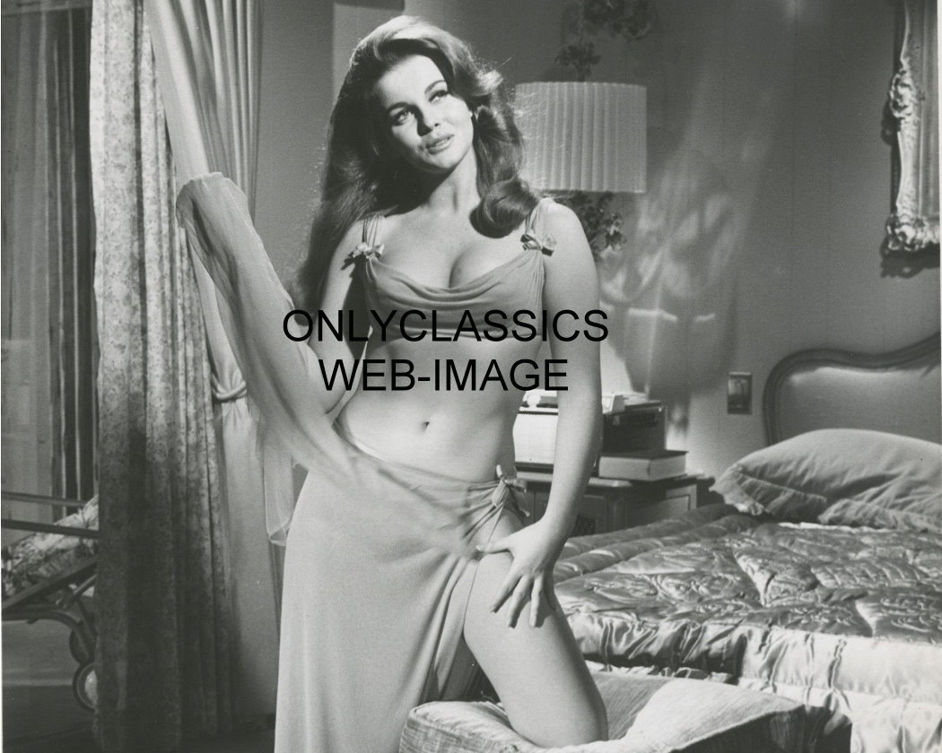 Ann Margret Sexy 72