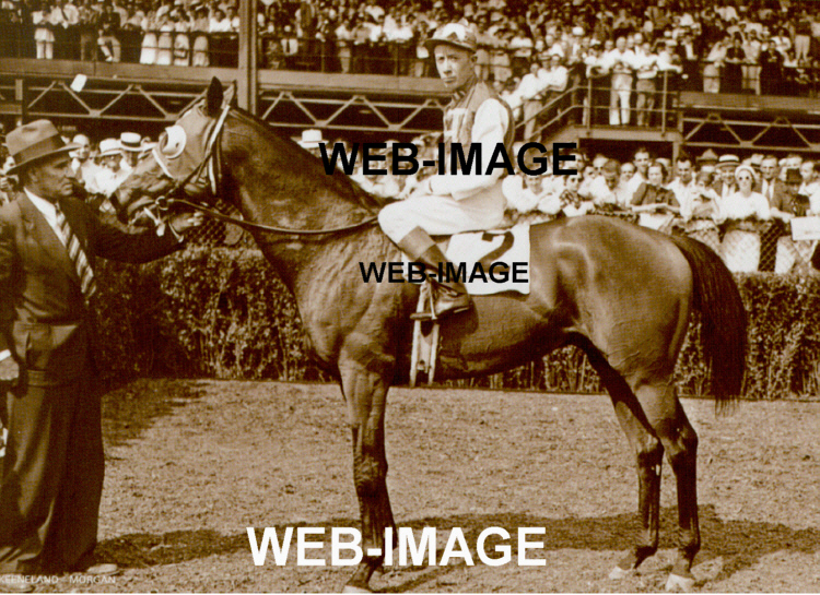seabiscuit and red pollard comparison essay 23 quotes from seabiscuit: seabiscuit quotes pollard had found the one place on earth that could hold his interest.