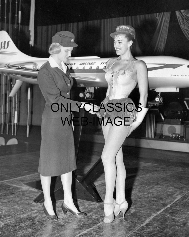 Flight attendants little black book 6